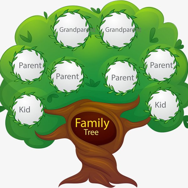 Building a Family Tree. - CapeTalk - Omny.fm
