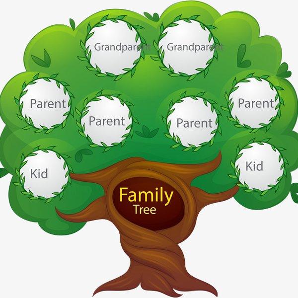 how to prepare family tree